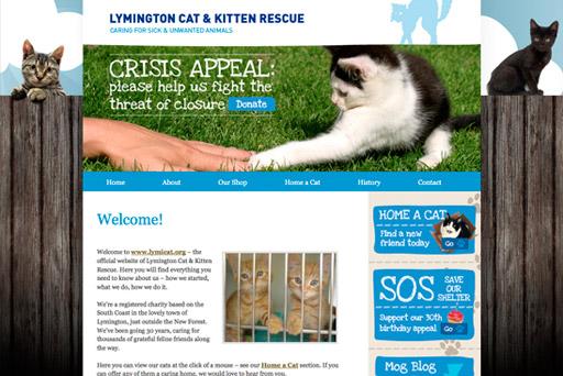 Cats Protection Lymington