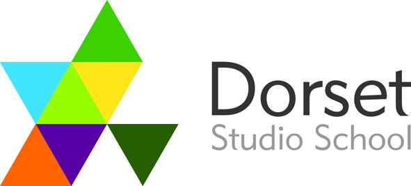 DSS Colour Logo