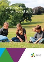 DSS Brochure v7.indd