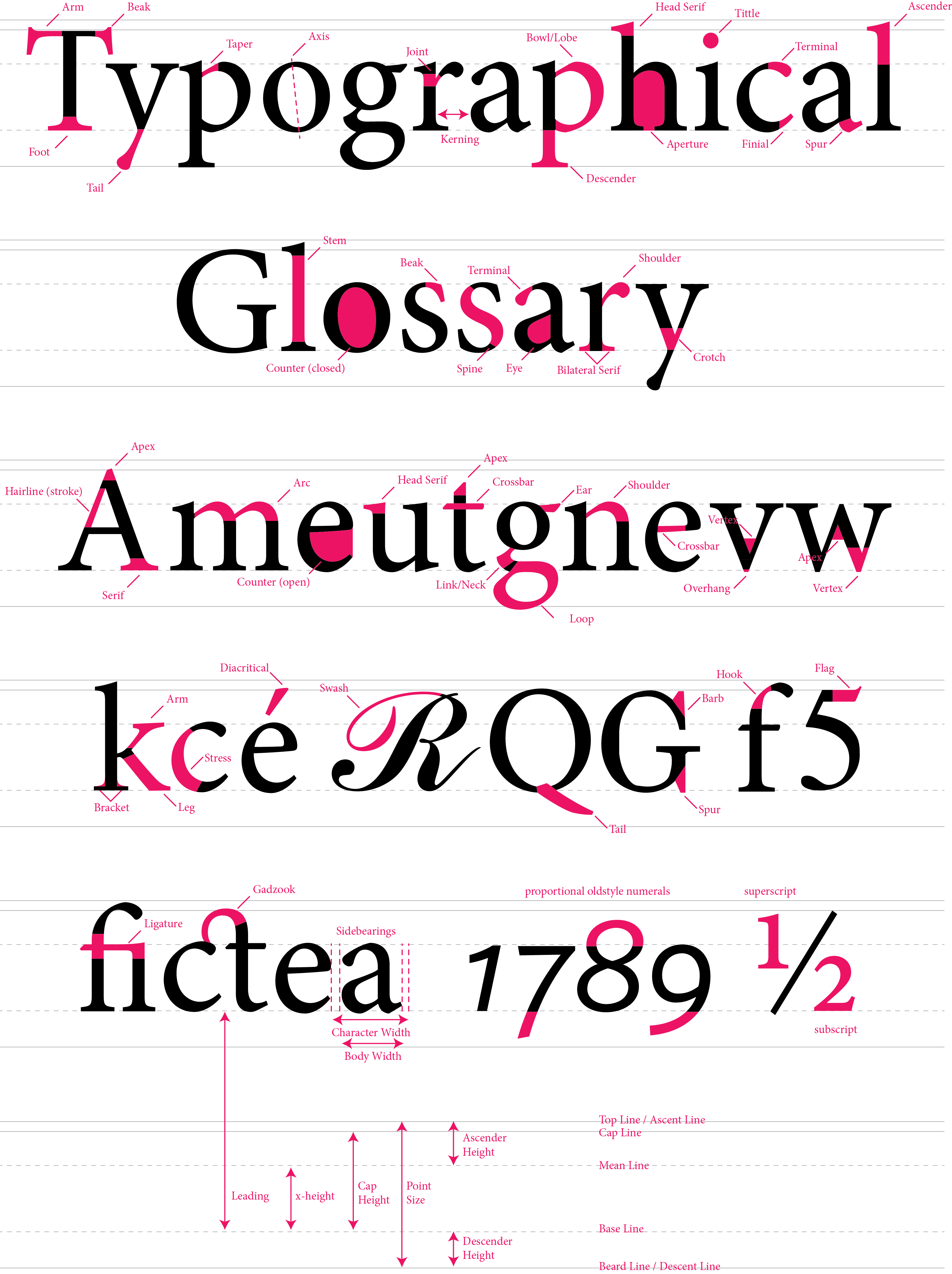 typography glossary